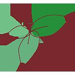 flower boutique fee blog Mobile Retina Logo
