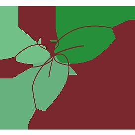 flower boutique fee blog Retina Logo
